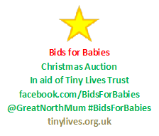 Xmas Auction Logo